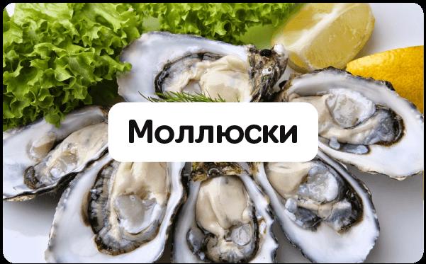 tovary-mollyuski
